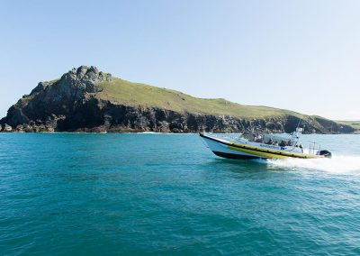 Boat trip from Padstow or Rock with Wavehunters