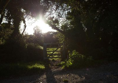 Sunlit gate at Mesmear